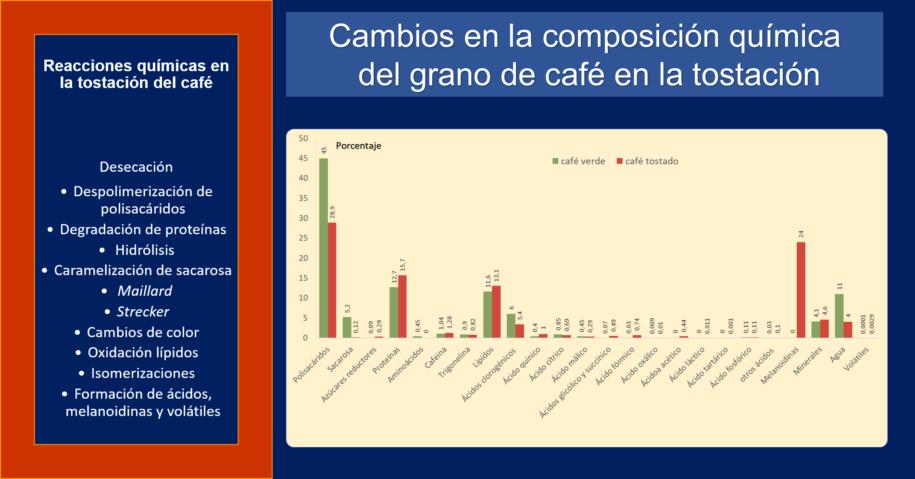 Reacciones cambios contenidos químicos café torrefacción